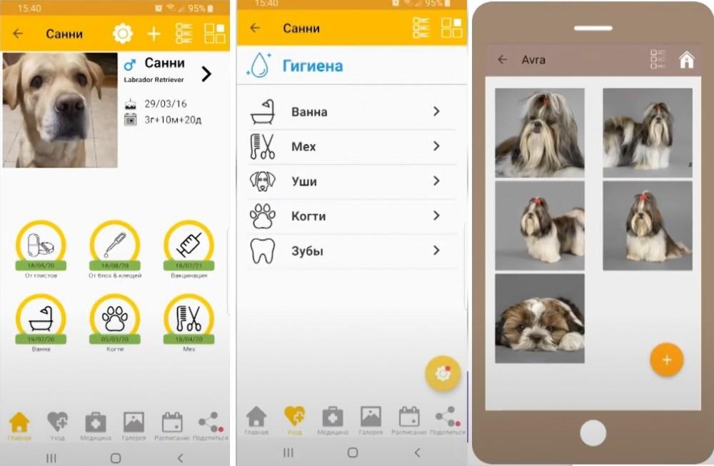 11PETS: УХОД ЗА ПИТОМЦЕМ - мобильное приложение для владельцев домашних животных